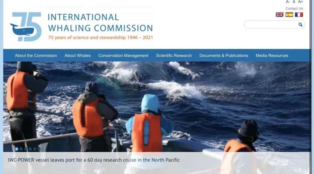 据IWC官网,委员会船只离开港口前往北太平洋进行为期六十天的研究航行
