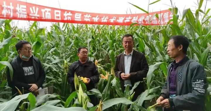 吉林省推广抗旱节水技术助力乡村振兴