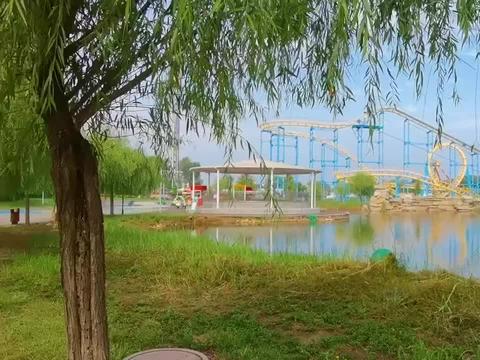 东营网红打卡地 花仙谷 亲自然