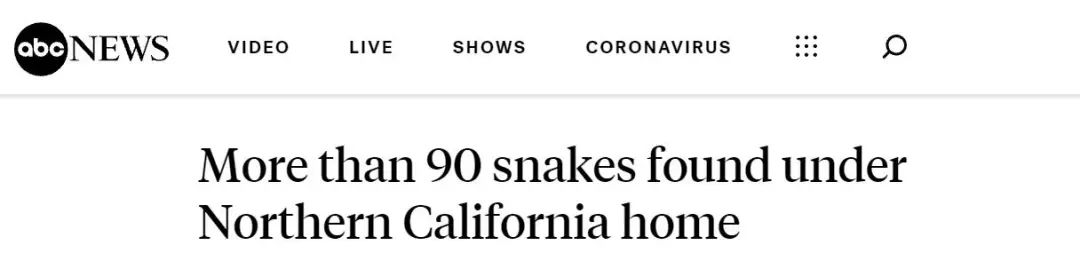 毛骨悚然!加州民宅地下惊现90多条蛇……