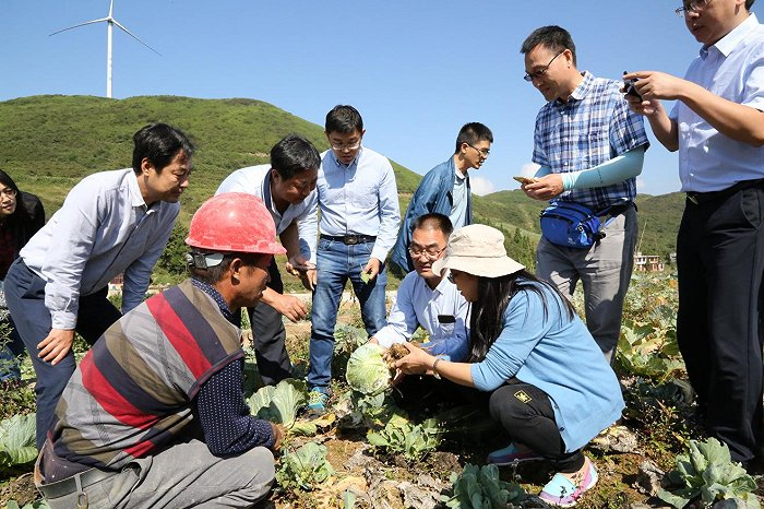 陕西杨凌:执着田畴打造知名农业硅谷