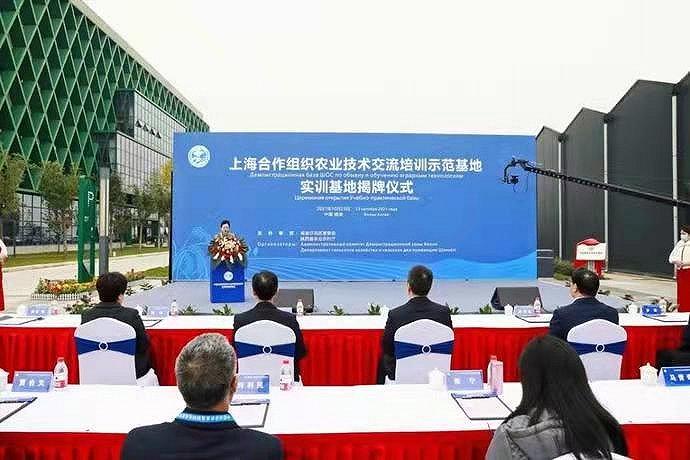 上合组织农业技术交流培训示范基地实训基地揭牌仪式在杨凌举行