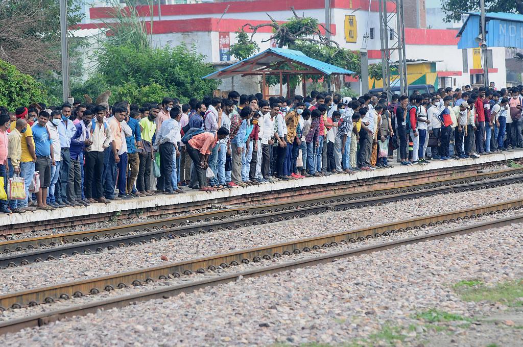 """印度北方邦上千名失业者立""""血书"""" 要求首席部长解决就业"""