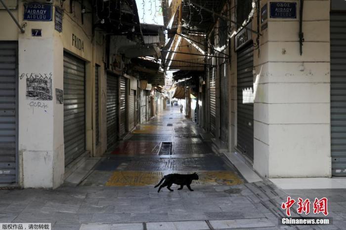 当地时间2020年11月7日,希腊雅典,一只猫在空荡的商业街上漫步。
