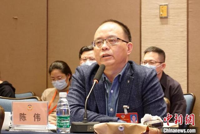 海南政协委员陈伟25日在政协联组讨论会上发言。 王晓飞 摄