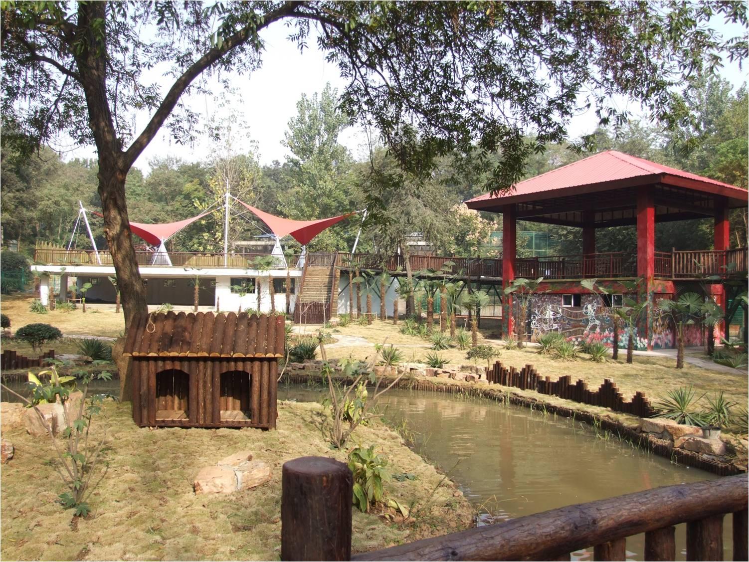 改造后的澳洲动物区 南京红山森林动物园 图