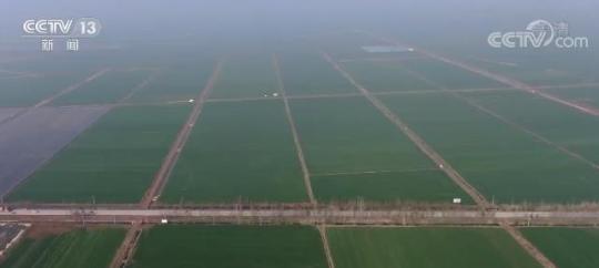 我國今年將新建1億畝高標準農田每畝糧食平均增產100公斤|高標準農田建設|霍邱|安徽_新浪科技_新浪網