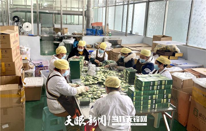"""【四力四全蹲点】坚持守正创新,福泉一家企业生产苦荞茶""""玩""""出了新花样"""