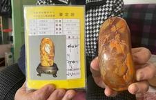 壹点帮办|用65万的藏品换来田黄石,经鉴定竟然是廉价寿山石
