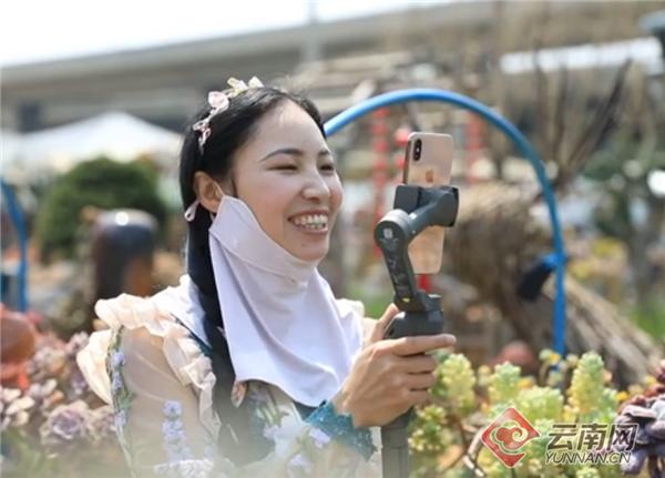 """云南多肉植物产业销量领跑全国 8成淘宝卖家推出""""云寄养"""""""