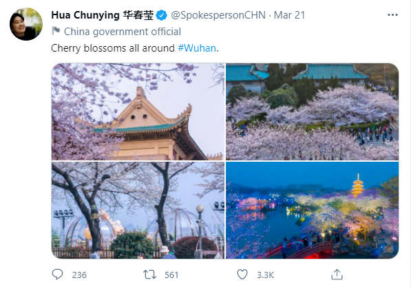 华春莹社交网络推特截图。
