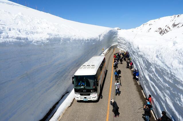 """日本""""立山黑部阿尔卑斯山脉路线""""再现14米高巨大雪墙"""