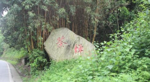 都江堰青城山镇:发展生态旅游 助力乡村振兴