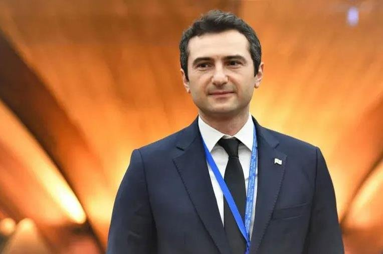 格鲁吉亚执政党议员库恰瓦当选该国议会议长