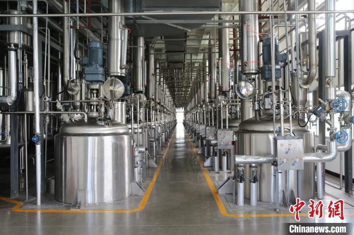 葛洪医药遗产在广东罗浮山得到传承 已研制180多个医药品种