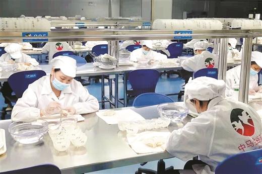 中马钦州产业园区产业项目加速集聚 构建产业发展新高地