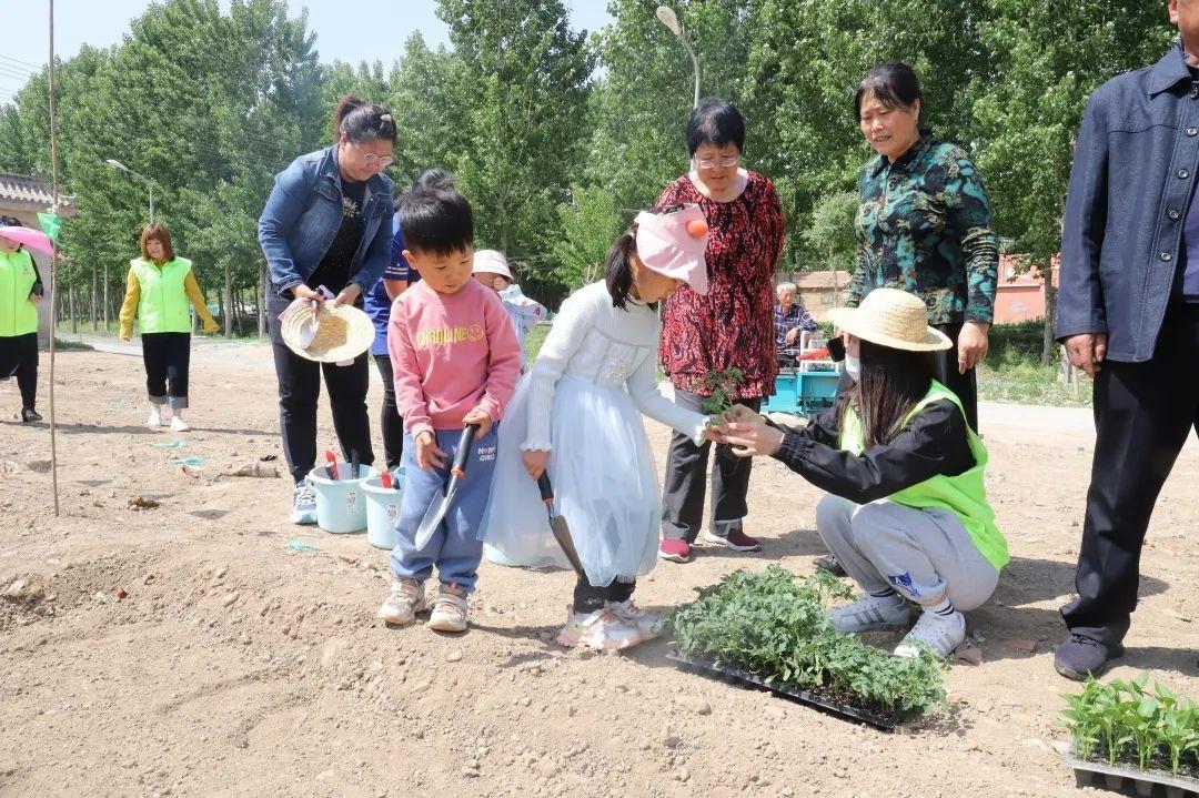 """依托""""文明银行"""",潞城镇300平方米荒地变成了""""开心农场"""""""