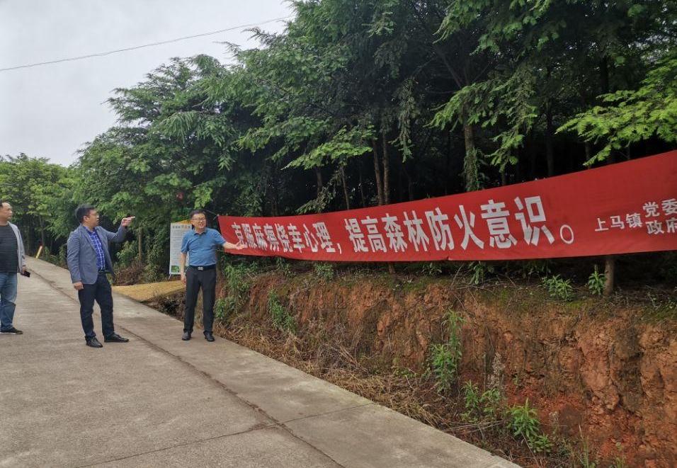 邓小军副局长带队督导纳溪区森林防灭火工作