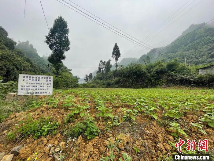 云南持续推进长江经济带废弃露天矿山生态修复