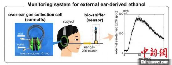 东京大学新发明戴耳罩或可测酒驾