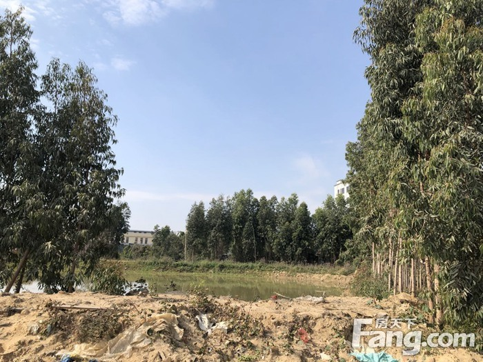 湛江霞山湖光路以现一宗仓储用地挂牌出让 总出让面积13592.52平方米