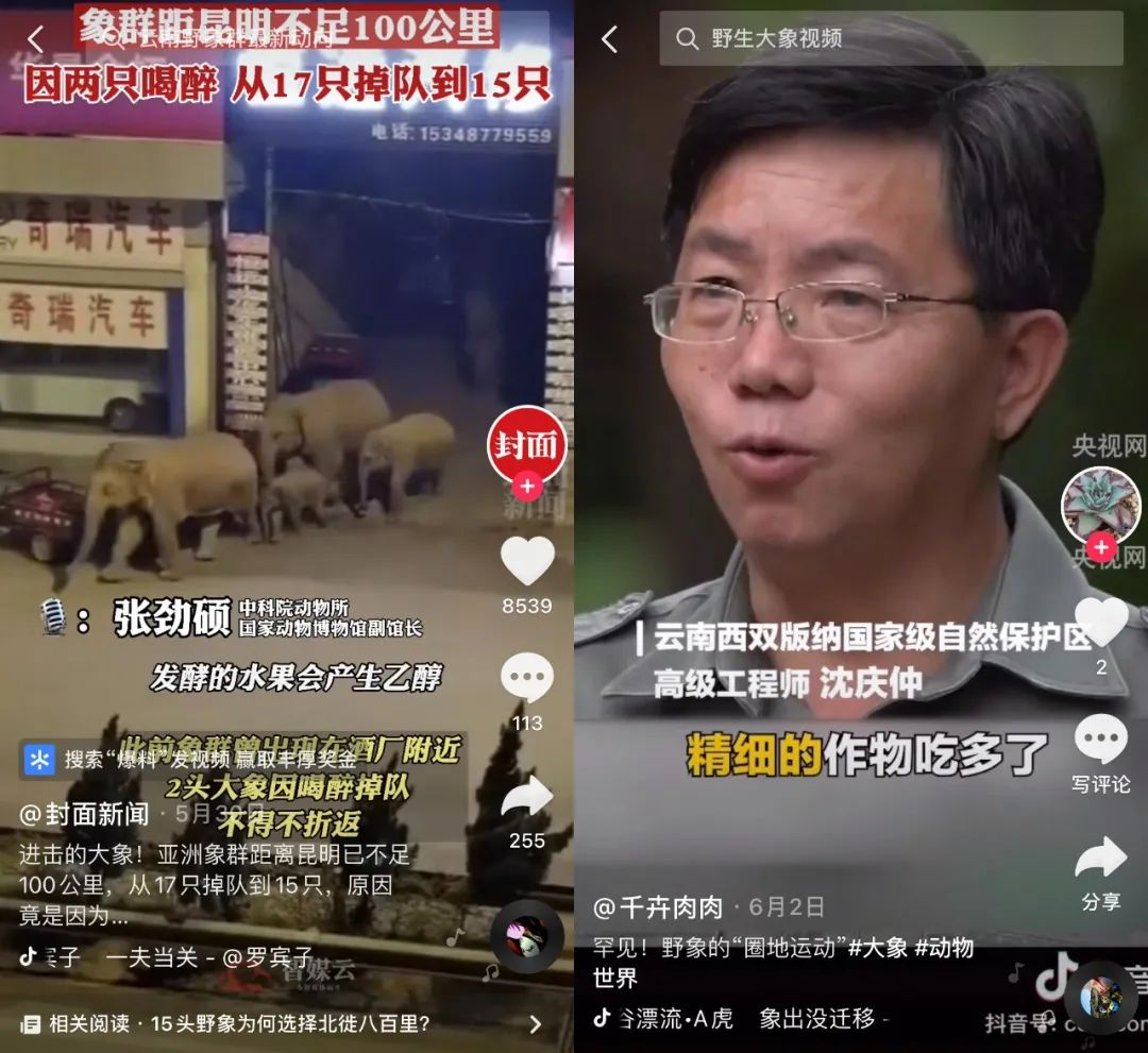 驻韩美军绊摔韩国大爷:被抓后没受惩罚 民众气炸闹到大使馆