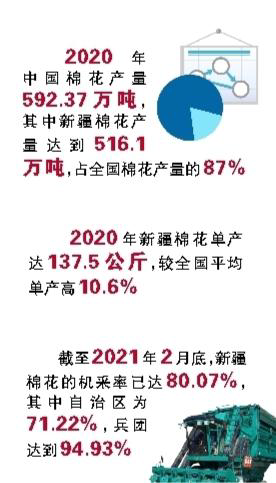 中国棉花行业未来发展的方向