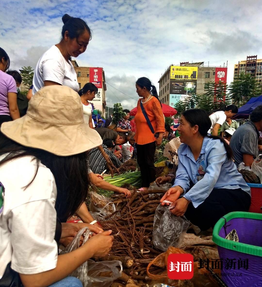 我们的节日·口述民俗丨四川会东城里端午前三天开卖草药 隆重程度不亚于过春节