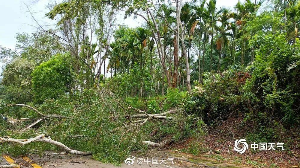 广西气象局启动台风Ⅳ级应急响应!假期出行请注意天气变化