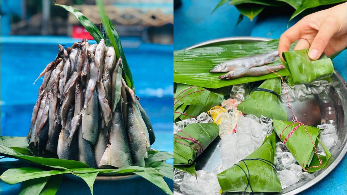 海豚白鲸成都吃粽子过端午,水下汉服秀小长假每日两场