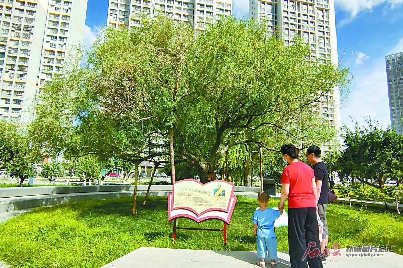 【风展红旗 党在新疆100年·遍地风流⑳】王成帮:绿化义务兵 造福一座城