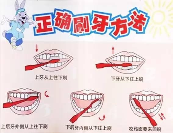 预防口腔疾病,从正确刷牙开始