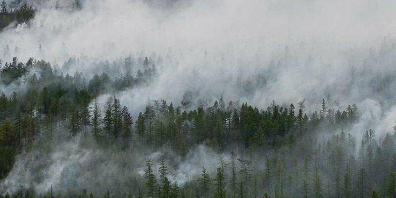 俄罗斯伊尔库茨克州扑灭一处大型森林火灾