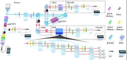 中国科大观测到开放量子系统多步演化的记忆效应
