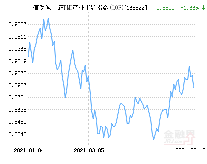 中信保诚中证TMT产业主题指数(LOF)净值上涨3.04% 请保持关注