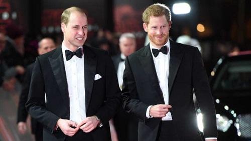 每日野兽:威廉王子和哈里王子共同为母亲戴安娜塑像 却未能掩盖兄弟之间裂痕