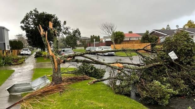 狂风袭击新西兰奥克兰南部 造成1人死亡2人受伤
