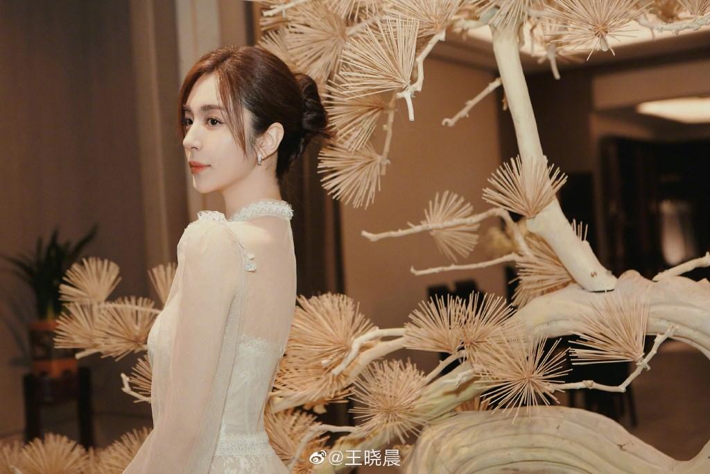 王晓晨活动写真上线 温柔纱裙演绎浪漫优雅