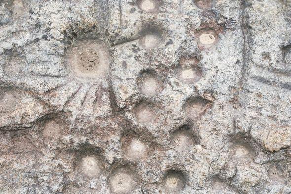 随州桐柏山脉发现远古岩画 再现史前农耕文明盛景