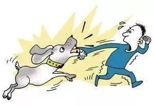 上海四岁男童遭邻家的狗咬伤毁容,邻居辩称:狗被绳链拴住了!法院判了