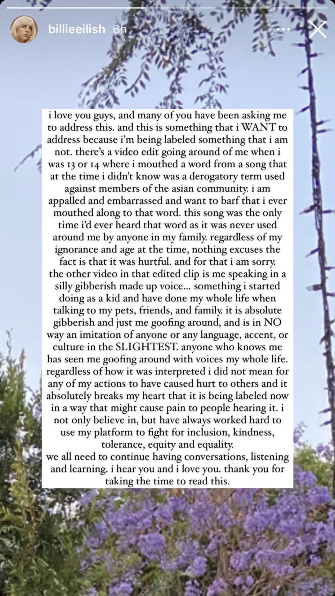 Screenshot of Bi Li's apology in Ins Story