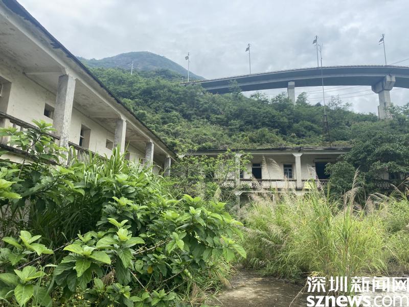 深圳暴雨黄色预警持续生效中 宝安光明龙岗龙华部分区域雨势较大