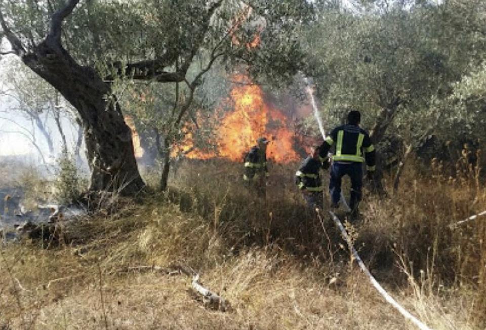 阿尔巴尼亚南部发生山林火灾 火势仍未得到有效控制
