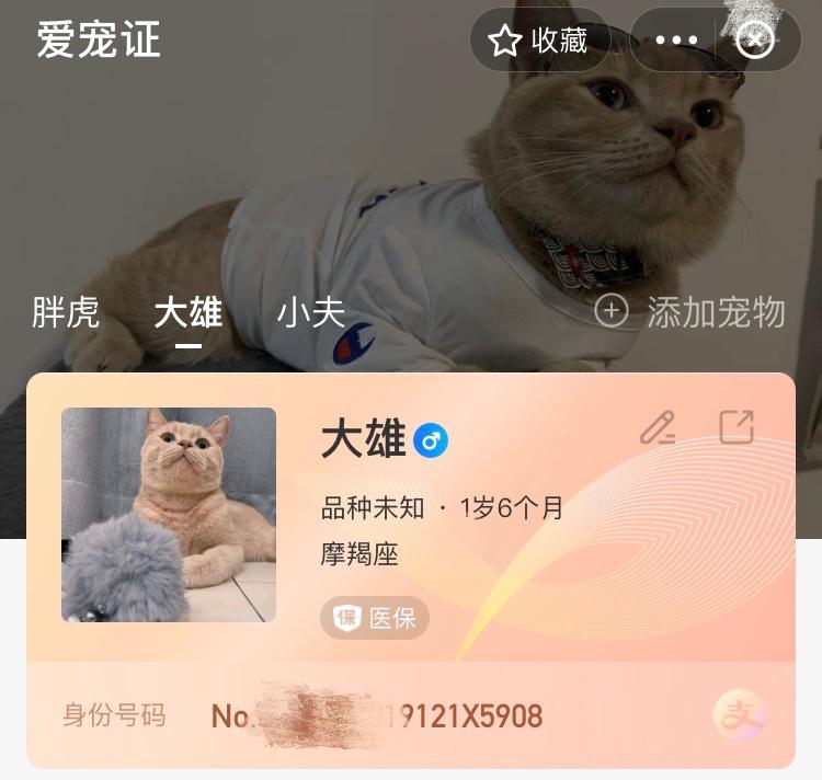 """上支付宝可为宠物建电子""""身份证"""",""""豆豆""""成全国最流行的宠物名字"""