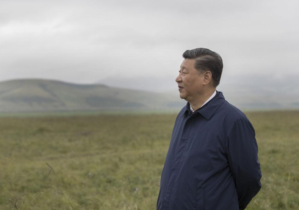 2019年8月19日至22日,习近平在甘肃考察。这是8月20日,习近平来到中农发山丹马场有限责任公司一场,实地察看马场经营发展情况,了解祁连山生态修复工作。