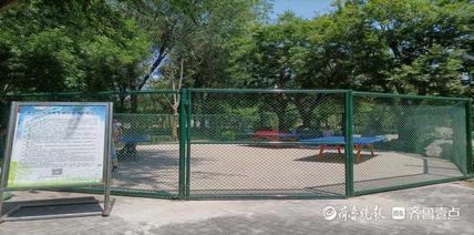 """淄博对已建成的城市公园场所进行""""微改造"""""""
