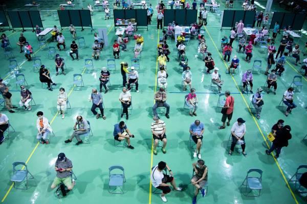 """台湾地区""""流行疫情指挥中心""""5日公布,全台目前累计251.9万人次施打疫苗,覆盖率约10.5%。(图为疫苗接种现场/澎湃影像)"""