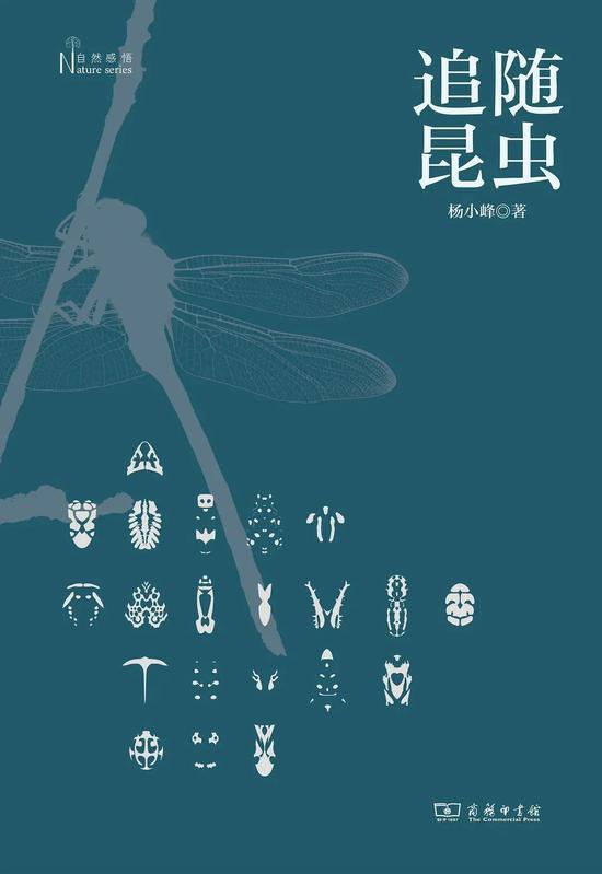 《追随昆虫》杨小峰 商务印书馆 2020年9月 推荐人:张劲硕