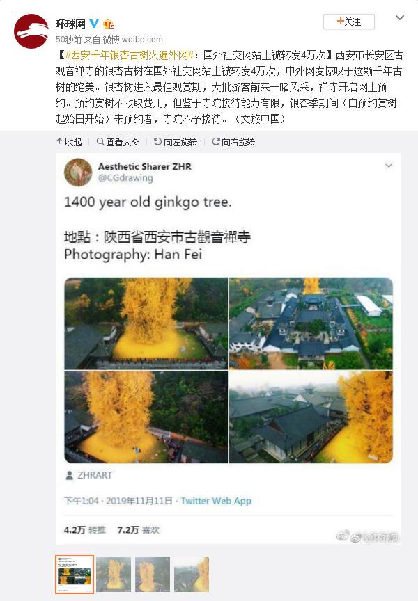 西安千年银杏古树在国外社交网站上被转4万次