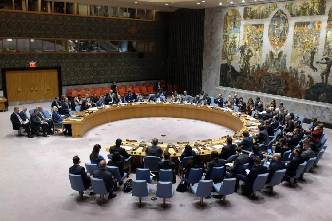 3月27日,在位于纽约的联合国总部,安理会举行会议审议戈兰高地问题。新华社记者李木子摄